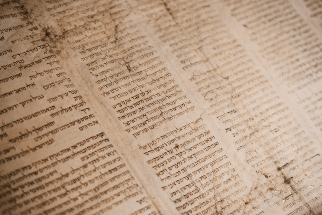 The Psalms Love the Pentateuch